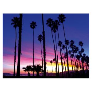 Palm Tree Sunset Notecards – Set of 8 on White Linen with Engraved Bamboo Pen